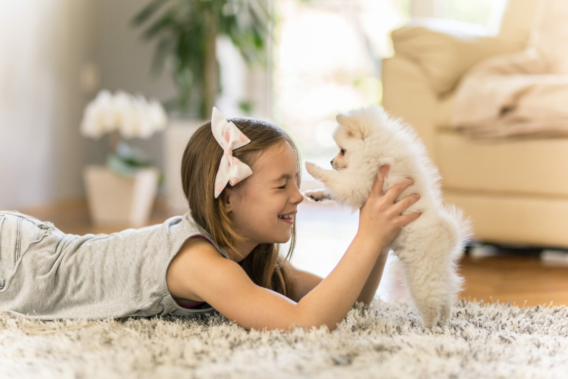 Girl playing with a Pomeranian puppy